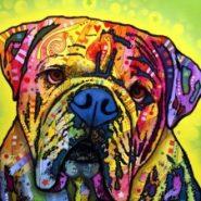 dean-russo-hey-bulldog-01